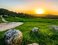 Israel landscapes