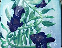 Fish & Ferns