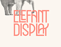 ELEFANT DISPLAY // Free Typeface