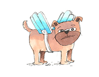 Children's book: Levente Király: Van egy kutyánk