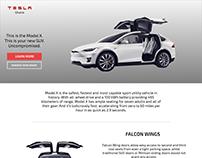 Tesla Ghana Model X Web Concept