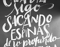 hasta la raiz, lettering music video