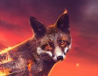 Fire Fox | Desktopography