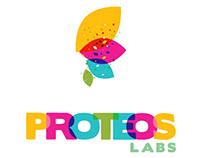 Proteos - Branding / Packaging