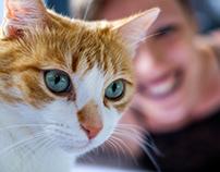CATS Lingerie