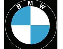 BMW 2002 Model