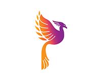 Phoenyx Partners Logo & Business Card