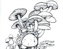 Pre-College Illustrations