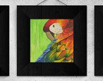 Animal Drawings/Paintings