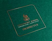 Chinthurst School prospectus