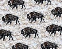 Snow Buffalo
