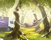 CUSHELLE 'Kenny Koala' TVC storyboards