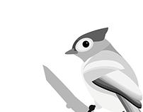 Acrylic Bird