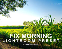 Free Download Fix Morning Adobe Lightroom Preset