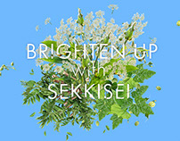 KOSE - Brighten Up Sekkisei