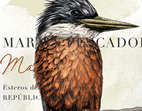 MARTÍN PESCADOR - Illustration label process