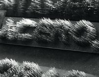 Lluvia tipográfica