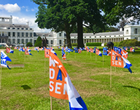 Flags for the Palace