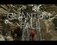 Quantum Fall