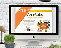 Product / Branding Design