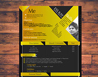 Free Modern Resume Template for Designer