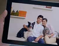 MSIG Pet Insurance & CNY videos