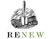 Renew Logo Identity Illustrated by Steven Noble