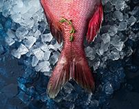 Food-photo для рыбного ресторана FISH HOUSE