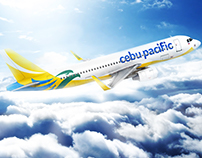 cebu pacific various icons - gui