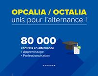 Infographie Opcalia / Octalia