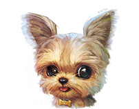 "【Customization NO.62】——Yorkshire Terrier""小啵"""