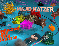 Website www.majidkatzer.de