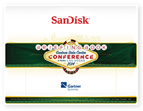 Briefing Book for SanDisk