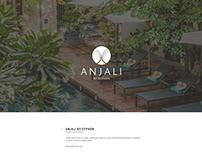 Anjali Branding, Website Design and Development Project