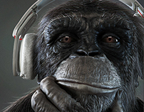Digital Monkee - An ape study sculpted in Zbrush