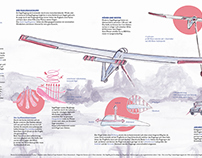 Infographics - Sailplanes and gliders