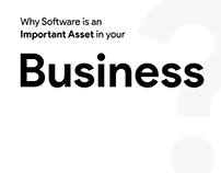 Why Software is an Important Asset in your Business?