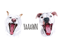 Did you YAWN!?