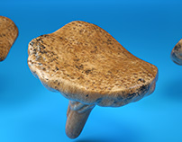 Mushroom Pattern Design