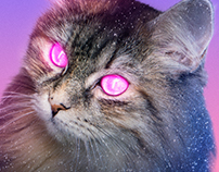 Poster 014 - Experimental Neon Cat