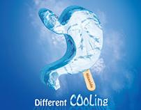Nizaxid brochure