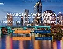Website for a Tampa Law Firm