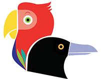 Parrot % Crow : Logo e studio