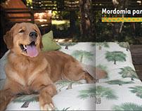 Guia 4 Rodas - Special edition: Viagens com seu cão