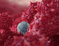 Of Proteins and Tumors