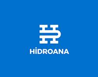 Hidroana Hybrid Car Branding Project