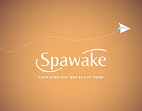Spawake Top selling Product carousel