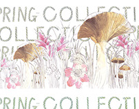 Flower illustrations(spring collection)