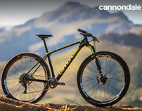 Cannondale All-New F-SI