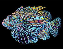 Electric Lionfish: Vector Illustration
